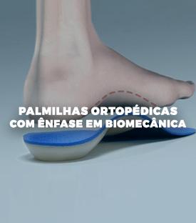 Palmilhas Ortopédicas com ênfase em Biomecânica